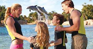 Ingresso Discovery Cove